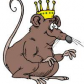 Rat king. Slewn by Brent and his commrades on the 4th day of August in the year of nineteen hundred and ninety five.