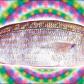 Trippy fish brah.