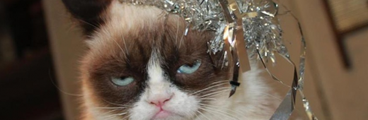 Eliana's Crappy New Year
